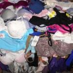 450 sous vêtements féminin